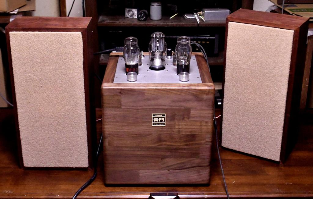 """The Tesseract 45"" SE tube amplifier * Max 4W"