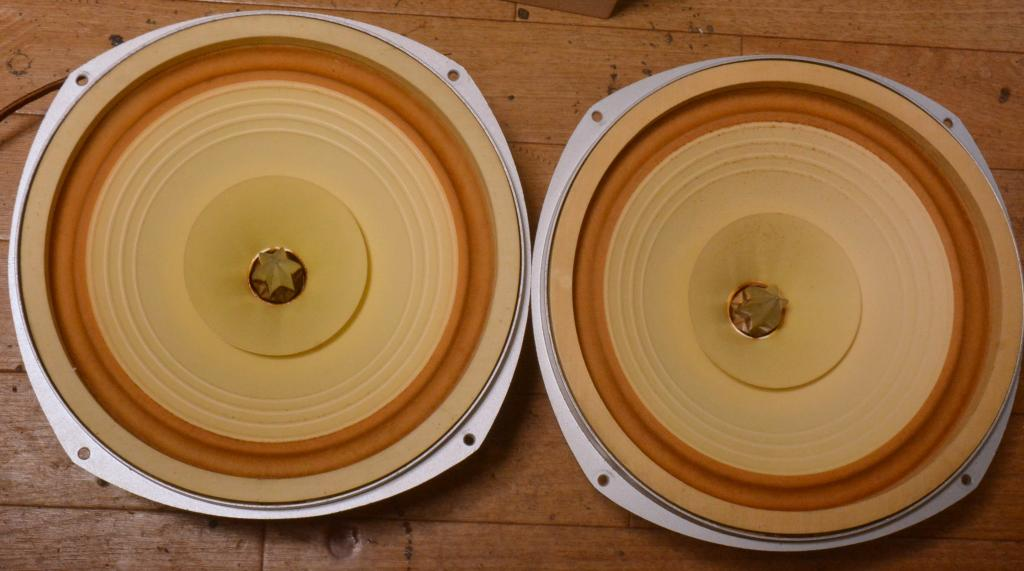 70s year PAIR Coral Beta 10B speaker 25cm double cone unit full range * Legend !